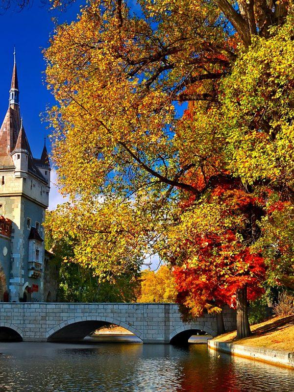 Budapest Private Walking Tour – Vajdahunyad Castle